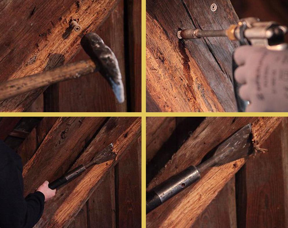traitement des bois brionne dans l eure au havre. Black Bedroom Furniture Sets. Home Design Ideas